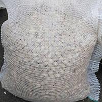 Лук севок озимый Gladstone (Голландия) 10 кг.