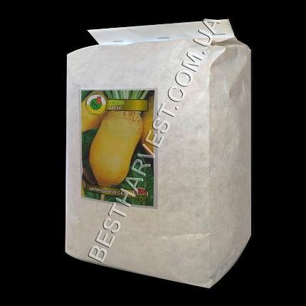 Семена свеклы «Урсус Поли» 1 кг, фото 2