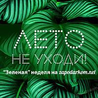 """""""Зеленая неделя"""" на zapodarkom.net"""