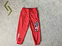Трикотажные спортивные штаны для девочек GRACE 98-128 р.р., фото 2