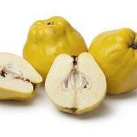 TPA Quince Flavor (Айва) 5мл