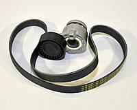 Комплект натяжитель + ремень генератора (-PS) на Renault Kangoo 1.5dCi 2001>2008 Renault (Оригинал) 117207020R