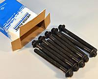 Болты головки блока цилиндров на Renault Master III 2010-> 2.3dCi - Victor Reinz (Германия)  14-32231-01
