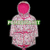 Детская ветровка куртка парка р. 80 1-1,5 года для девочки с капюшоном подкладка хлопок 3623 Серый
