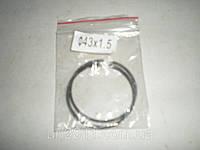 Кольца поршневые 43х1,5мм (2шт)