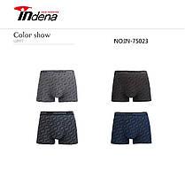 Чоловічі боксери стрейчеві марка «INDENA» АРТ.75023, фото 3