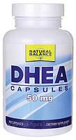 ДГЭА / DHEA (Дегидроэпиандростерон), 50 мг 180 капсул