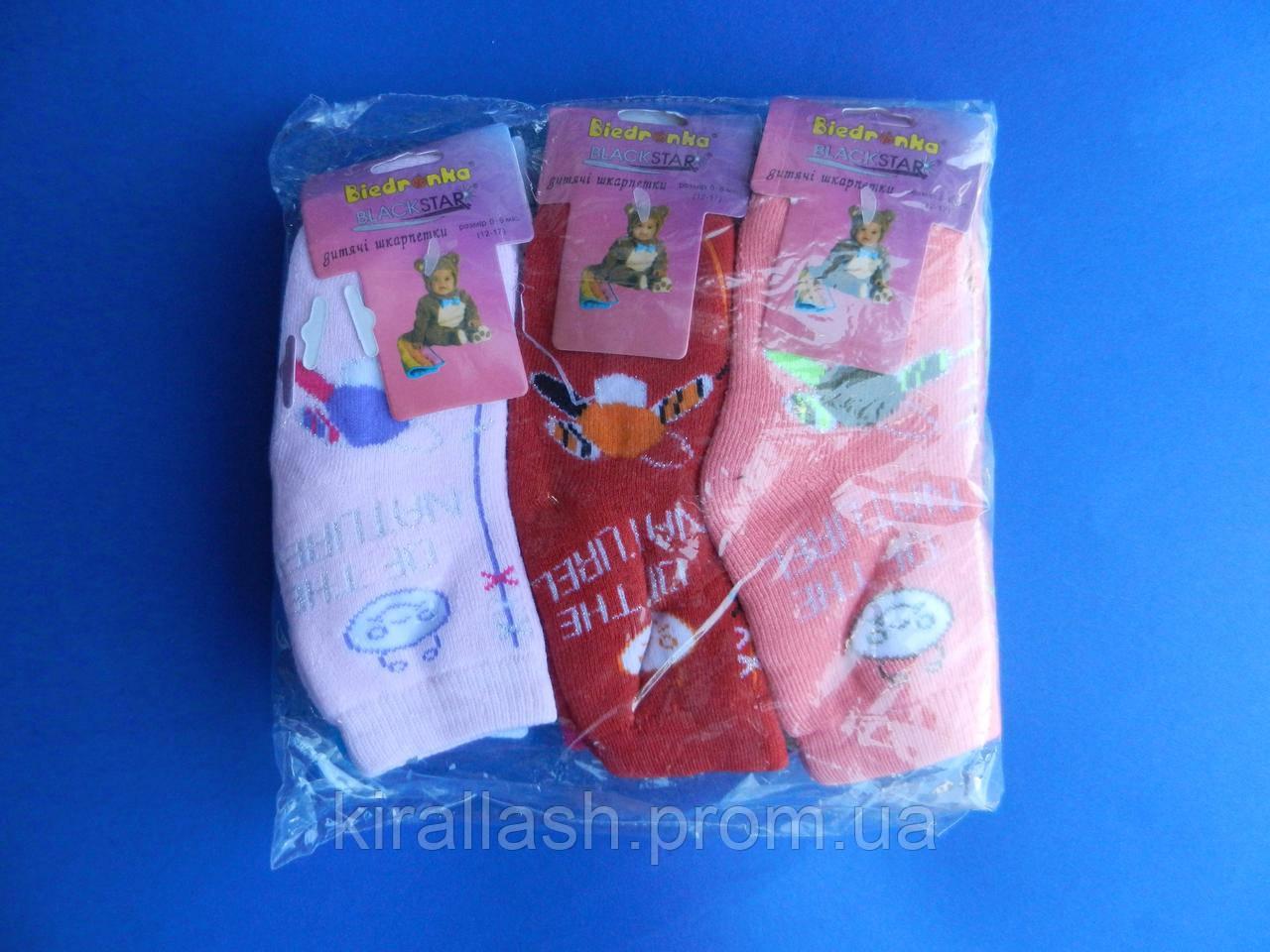 """Носки (0-6 месяцев) махровые """"Biedronka"""" для девочек  УКРАИНА"""