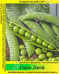 Семена гороха «Джоф» 25 кг (мешок)