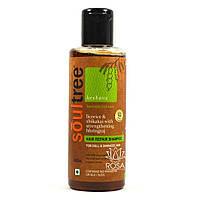 Органический шампунь для восстановления волос с лакричником и кокосовым маслом