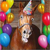 День Рождение в конном клубе!