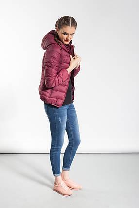 Легкая куртка Glo-Story, в цвете марсала, фото 2