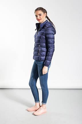 Куртка женская Glo-Story, синий цвет, фото 2