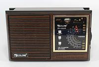 Портативный радио приемник RX-133