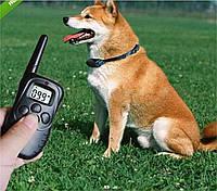 Тренировочный ошейник для собак Dog Training