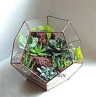 "Флорариум ""Додекаэдр"" с суккулентами, ширина -25 см, высота -28 см."