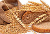 Куплю пшеницу!!!