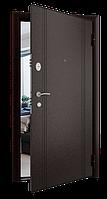 Дверь металлическая  Gant TM