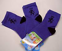 Детские носки синего цвета с гербом хлопковые для мальчика