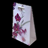 Пакет подарочный №5 (255Х150Х75) от 10 шт., фото 1