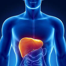 Мезотерапія печінки і жовчного з допомогою БАД НСП.