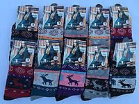 Махровые носки Ангора 37-42, розница