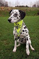 Бандана Trixie Neckerchief для собак светоотражающая S-M