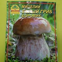 Мицелий Белый гриб Боровик 10гр