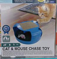 "Игрушка для кошек ""ПОЙМАЙ МЫШКУ"" Cat & mouse chase toy."