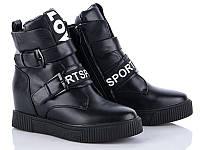 Модные демисезонные женские ботинки сникерсы оптом от производителя GFB K01 (6 пар,36-41)