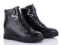 Модные демисезонные женские ботинки сникерсы оптом от производителя GFB K03 (6 пар,36-41)