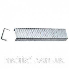 Скобы, 6 мм, для мебельного степлера, закаленные, тип 53, 1000 шт.// MTX MASTER