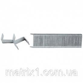 Скобы, 6 мм, для мебельного степлера, закаленные, тип 140, 1000 шт.// MTX MASTER