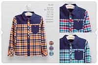 Рубашка для мальчиков 2 года Оранжевый синий Фланель РБ82(98) Бэмби Украина