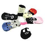 Оригинальные носочки для собачьих лапок, фото 4