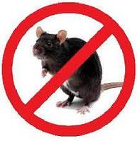 Отрута в зерносховища від гризунів, щурів, мишей. Бродіфакум+ Бромаділон, зерно. Мішок 1кг