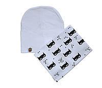 Комплект шапка і шарф хомут демісезонний