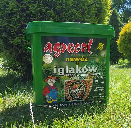 Удобрение Agrecol для ХВОЙНЫХ растений от пожелтения хвои 5кг (гранулированное), фото 2