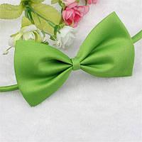 Галстук для собаки Бабочка зеленого цвета, фото 1