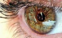 Секреты здоровых глаз: подробно