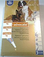 Адвокат для собак весом от 25 до 40кг(1 пипетка)