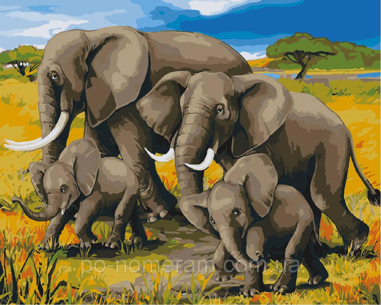 Раскраска по номерам Идейка Африканский полдень (KH2464 ...