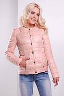 Пудровая демисезонная женская короткая куртка-жакет на синтепоне