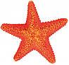 Декорация Trixie Assortment Starfish для аквариума морские звезды, полиэфирная смола, 12 шт