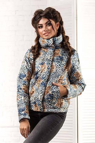 """Женская стильная короткая куртка на синтепоне 2066 """"Philipp Plein Leo"""", фото 2"""