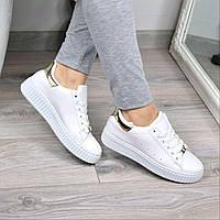 Кроссовки криперы Tissa белые с золотом 3577, спортивная обувь, фото 1