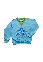 """Реглан для мальчика """"Mountain bike"""", 2-8 лет, голубой с зеленым"""