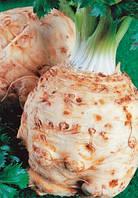 Семена сельдерея корневого Балена (Balena). Упаковка 10 000 семян. Производитель Bejo Zaden