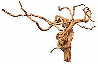 Корень наперстянки Trixie Finger Roots для аквариума декоративный, 50 см