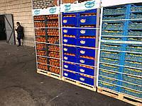 Апельсин (цена с растаможкой и доставкой в Киев) Фрукты Турция